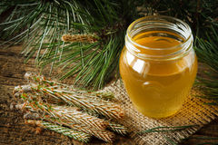 Pine syrup Royalty Free Stock Photography