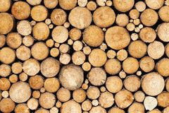 Pine timber background royalty free stock images