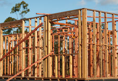 Pine Timber Wall Frames House Structure Royalty Free Stock Photo