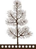 Pine tree. Stock Vector Illustration