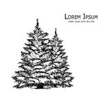 Pine tree, art sketch for your design. Vector illustration Royalty Free Stock Images