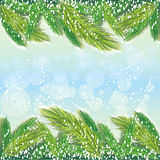 Pine-tree background Royalty Free Stock Photos