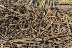 Pine tree bark Stock Images