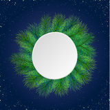 Pine tree border background. High detailed pine branches forming frame around round label made of cardboard Stock Image