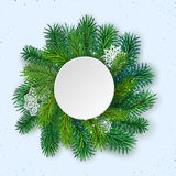 Pine tree border background. High detailed pine branches forming frame around round label made of cardboard Royalty Free Stock Photos