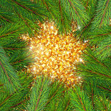 Pine tree border background. High detailed pine branches forming frame around sparkling golden background Stock Photos