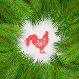 Pine tree border background. High detailed pine branches forming frame around stylized rooster silhouette Royalty Free Stock Photo