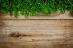 Pine tree border on old wooden background Stock Photos