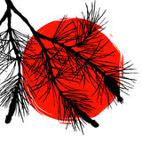 Pine tree branch and big red sun Royalty Free Stock Image