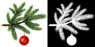 Pine tree branch with Christmas ball. On white background. Vector Illustration Stock Photos