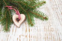 Pine tree branch Royalty Free Stock Photos