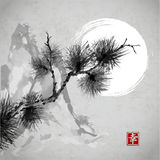 Pine Tree Branch, Mountains And The Moon Stock Photography