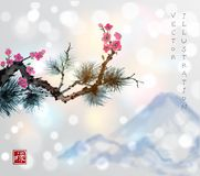 Pine tree branch and sakura in blossom. Traditional oriental ink painting sumi-e, u-sin, go-hua. Contains hieroglyph -. Well-being Royalty Free Stock Image
