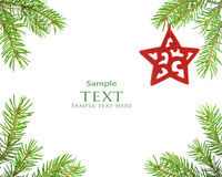 Pine tree branch and star christmas Stock Image