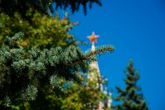 Pine tree branch. Tower with a star on the top in the background. Pine tree branch. Tower with a star on the top on the background. Moscow, Russia royalty free stock image