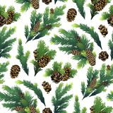Pine tree branches and cones. Christmas design. Vector seamless pattern Stock Images