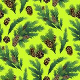 Pine tree branches and cones. Christmas design. Vector seamless pattern Stock Photography