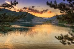 Pine tree branches framing reflective lake and golden hour sunset on Zavoj lake stock images