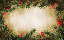 Pine tree branches with Christmas lights royalty free stock photo