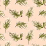 Pine tree branches on pale pink background pattern. Stock Image