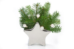 Pine tree branches in a star shaped vase Stock Image