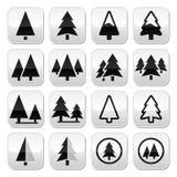 Pine tree  buttons set Stock Photo