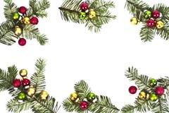 Pine tree  and christmas balls Stock Images