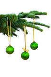Pine tree and Christmas ornaments Royalty Free Stock Image