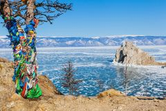Pine Tree with colorful cloth to worship Shaman rock at Baikal. Pine Tree with colorful cloth to worship Shaman rock in frozen Baikal lake during winter with Royalty Free Stock Photos