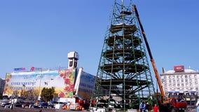 Pine tree construction disassembling in Kiev, Ukra stock video footage