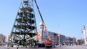Pine tree construction disassembling in Kiev, Ukra stock video footage