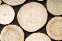 Pine tree cross-sections with annual rings on black background. Lumber piece close-up, top view. Pine tree cross-sections with annual rings on black background stock images