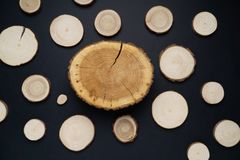 Pine tree cross-sections with annual rings on black background. Lumber piece close-up, top view. Pine tree cross-sections with annual rings on black background stock photo