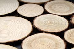 Pine tree cross-sections with annual rings on plane black surface. Lumber piece close-up. Pine tree cross-sections with annual rings on plane black surface royalty free stock images