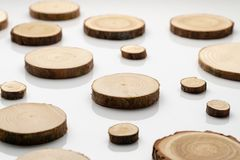 Pine tree cross-sections with annual rings on plane white surface. Lumber piece close-up. Pine tree cross-sections with annual rings on plane white surface royalty free stock images