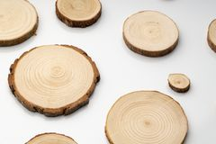 Pine tree cross-sections with annual rings on plane white surface. Lumber piece close-up. Pine tree cross-sections with annual rings on plane white surface stock image