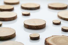 Pine tree cross-sections with annual rings on plane white surface. Lumber piece close-up. Pine tree cross-sections with annual rings on plane white surface royalty free stock photos