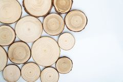 Pine tree cross-sections with annual rings on white background. Lumber piece close-up, top view. Pine tree cross-sections with annual rings on white background stock images