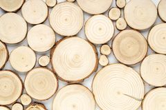 Pine tree cross-sections with annual rings on white background. Lumber piece close-up, top view. Pine tree cross-sections with annual rings on white background royalty free stock photo