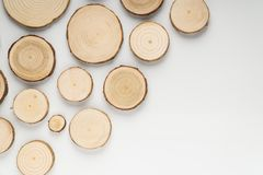 Pine tree cross-sections with annual rings on white background. Lumber piece close-up, top view. Pine tree cross-sections with annual rings on white background royalty free stock photography