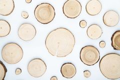 Pine tree cross-sections with annual rings on white background. Lumber piece close-up, top view. Pine tree cross-sections with annual rings on white background royalty free stock photos