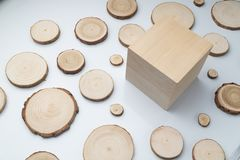 Pine tree cross-sections with annual rings and wooden cube on plane white surface. Lumber piece close-up. Pine tree cross-sections with annual rings and wooden royalty free stock photography