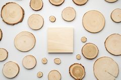 Pine tree cross-sections with annual rings and wooden square on white background. Lumber piece close-up, top view. Pine tree cross-sections with annual rings stock images