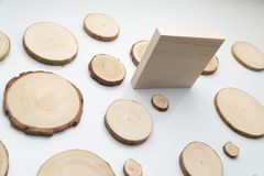 Pine tree cross-sections with annual rings and wooden square on white surface. Lumber piece close-up. Pine tree cross-sections with annual rings and wooden stock images