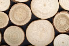 Free Pine Tree Cross-sections With Annual Rings On Black Background. Lumber Piece Close-up, Top View. Royalty Free Stock Photography - 141757497
