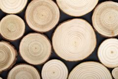 Free Pine Tree Cross-sections With Annual Rings On Black Background. Lumber Piece Close-up, Top View. Royalty Free Stock Images - 142682299