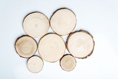 Free Pine Tree Cross-sections With Annual Rings On White Background. Lumber Piece Close-up, Top View. Stock Photo - 141543630