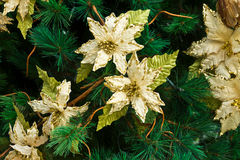 Pine tree decoration Stock Images