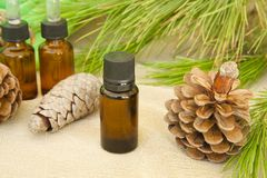 Pine tree essential oil stock photography