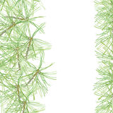 Pine-tree. Floral background, invitation or greeting card. Water. Watercolor background with pine branches. Maybe an invitation, greeting card, element of your Royalty Free Stock Image